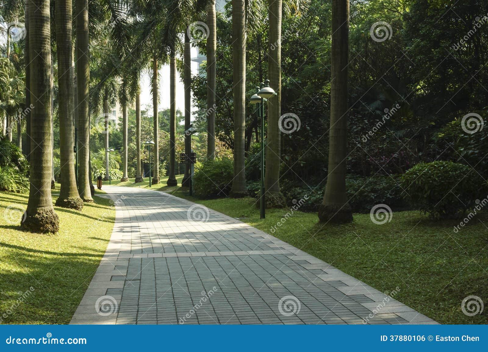 Ίχνη πάρκων