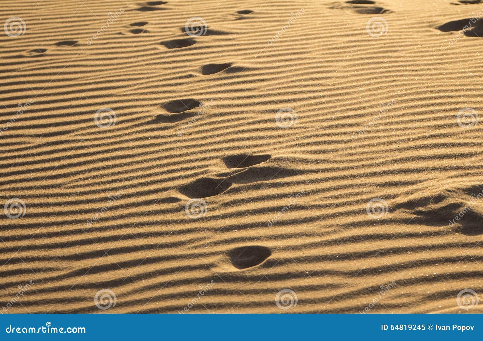 Ίχνη σε μια άμμο