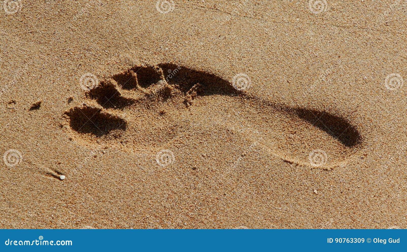 Ίχνος άμμου