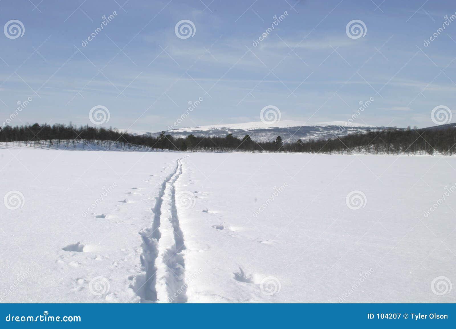 ίχνος σκι