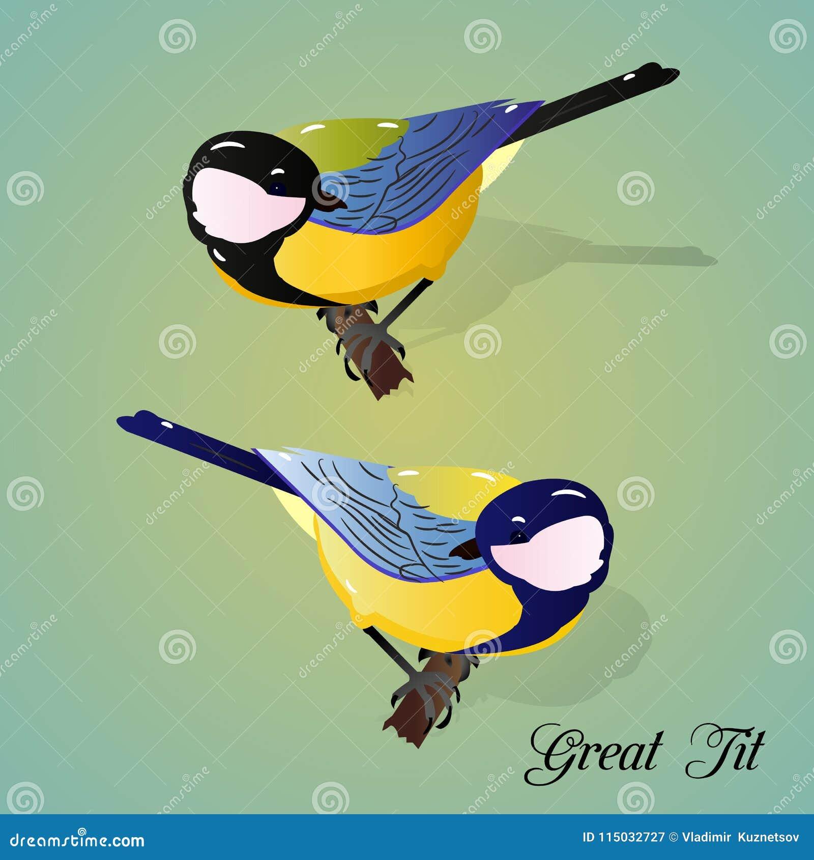 μεγάλο πουλί για την ώριμη νεοσσών με μεγάλες πούτσες