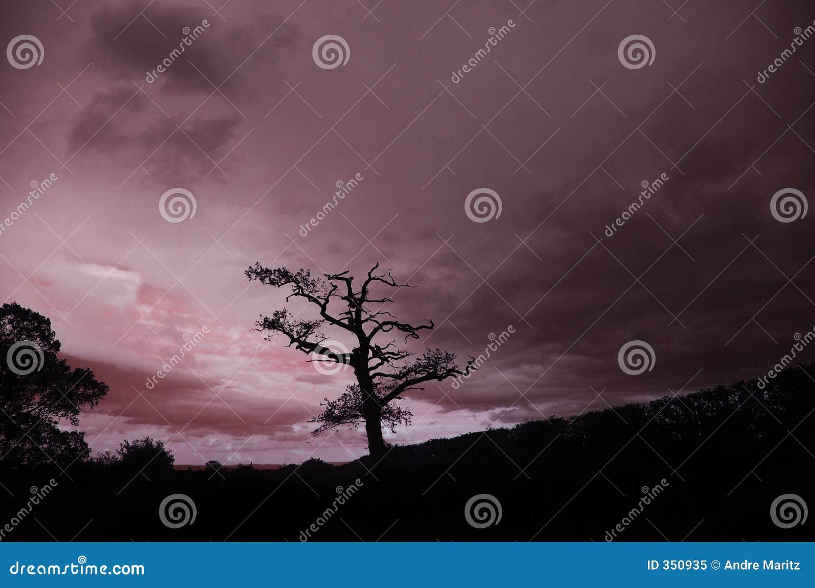 αγγλικό ηλιοβασίλεμα
