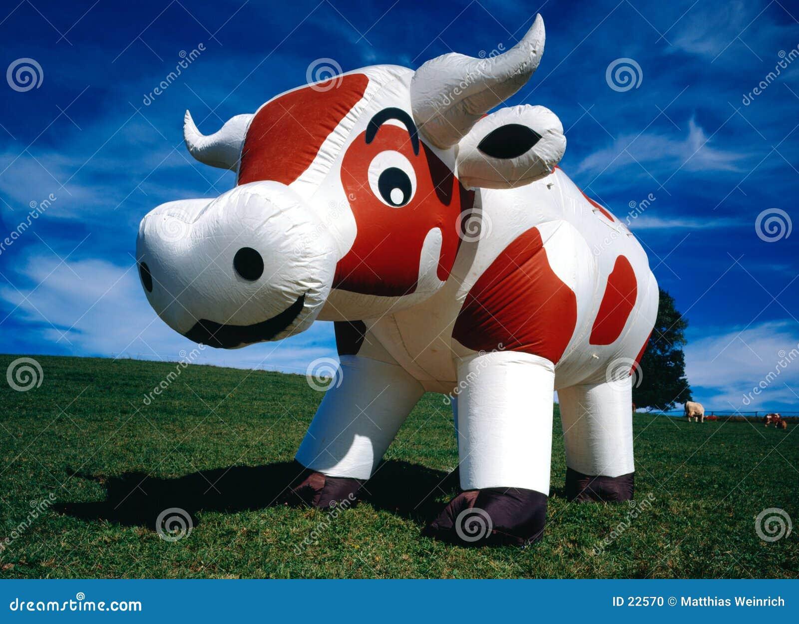 αγελάδα διογκώσιμη