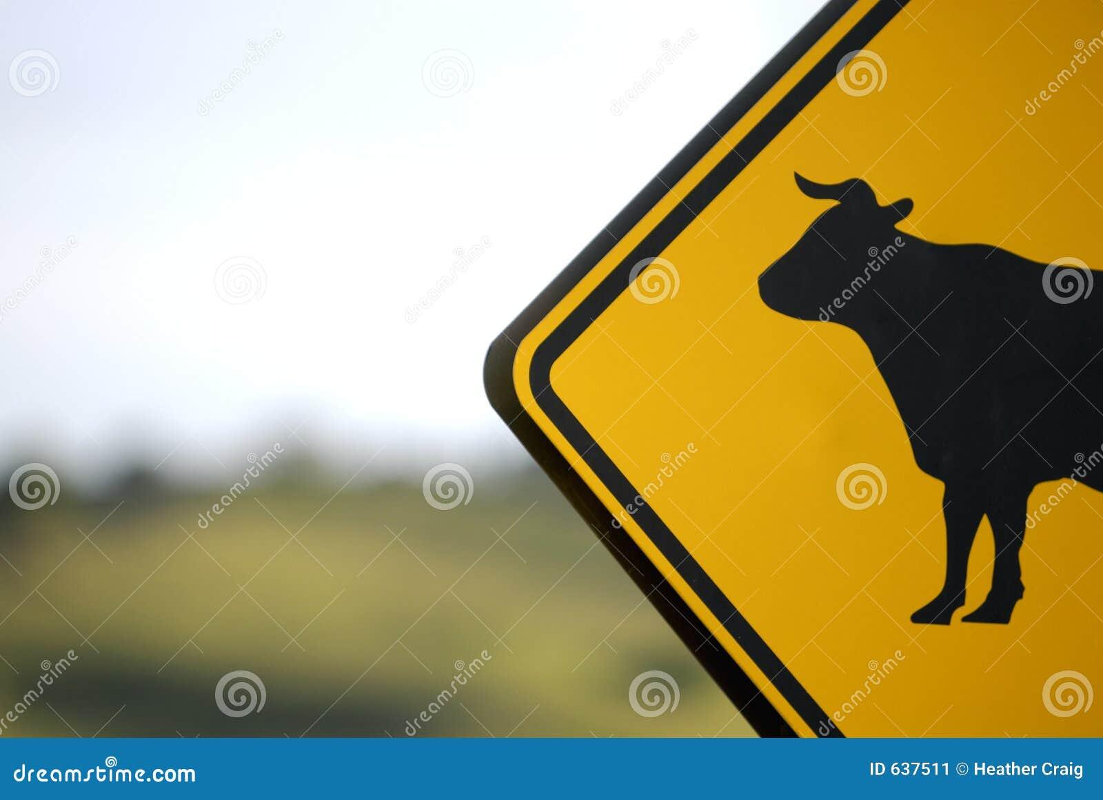 αγελάδα ταύρων κανένα σημά&del