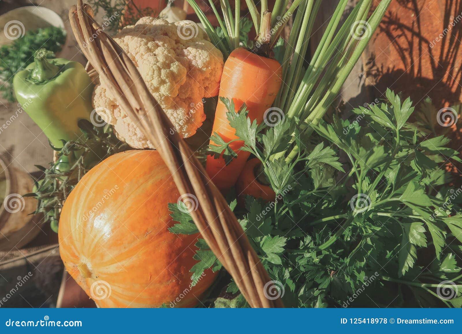 Αγροτικά λαχανικά στο καλάθι Φυτικός φρέσκος κήπος οργανικός