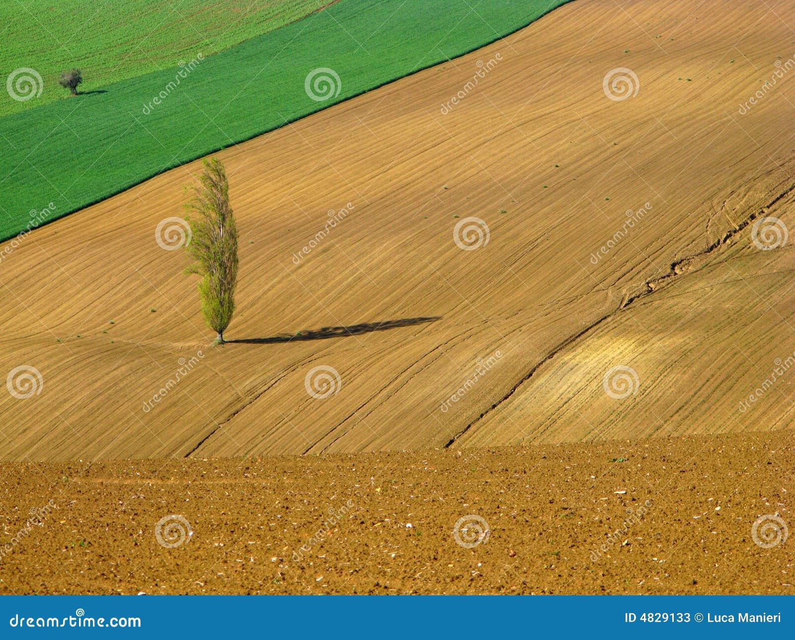 αγροτικός φυσικός