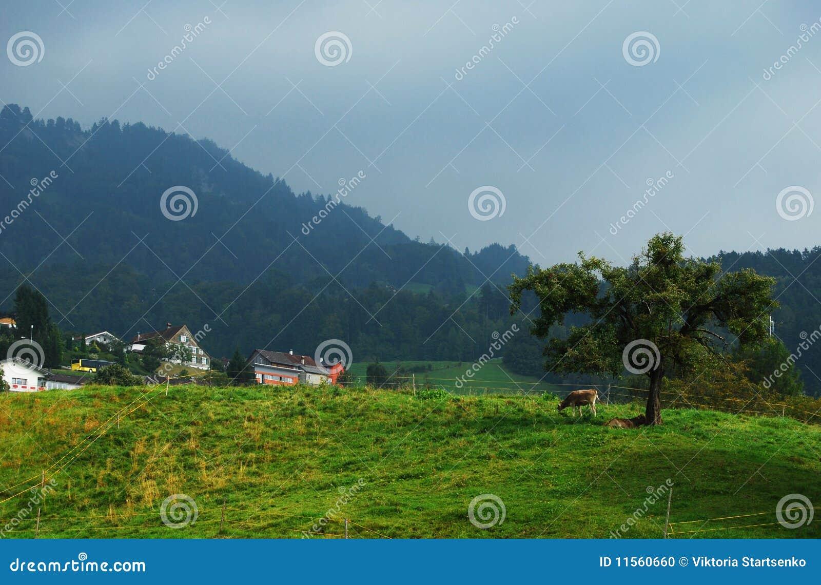 αγροτικό βουνό