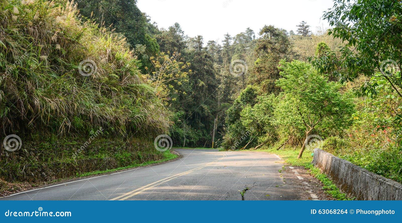 Αγροτικό τοπίο με το δρόμο στην επαρχία