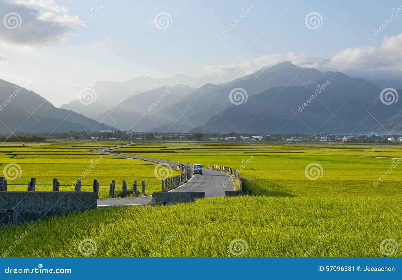 Αγροτικό τοπίο της Ταϊβάν
