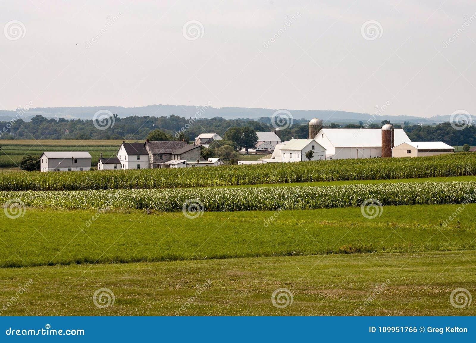 Αγρόκτημα Amish την ηλιόλουστη ημέρα 3