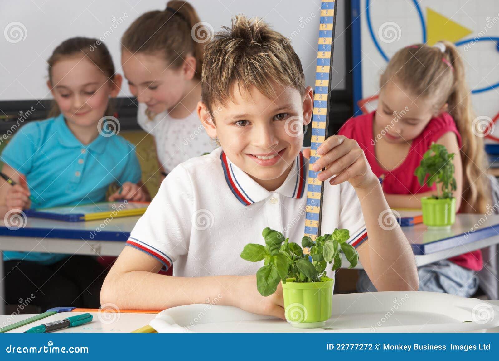 Αγόρι που μαθαίνει για τα φυτά στη σχολική τάξη
