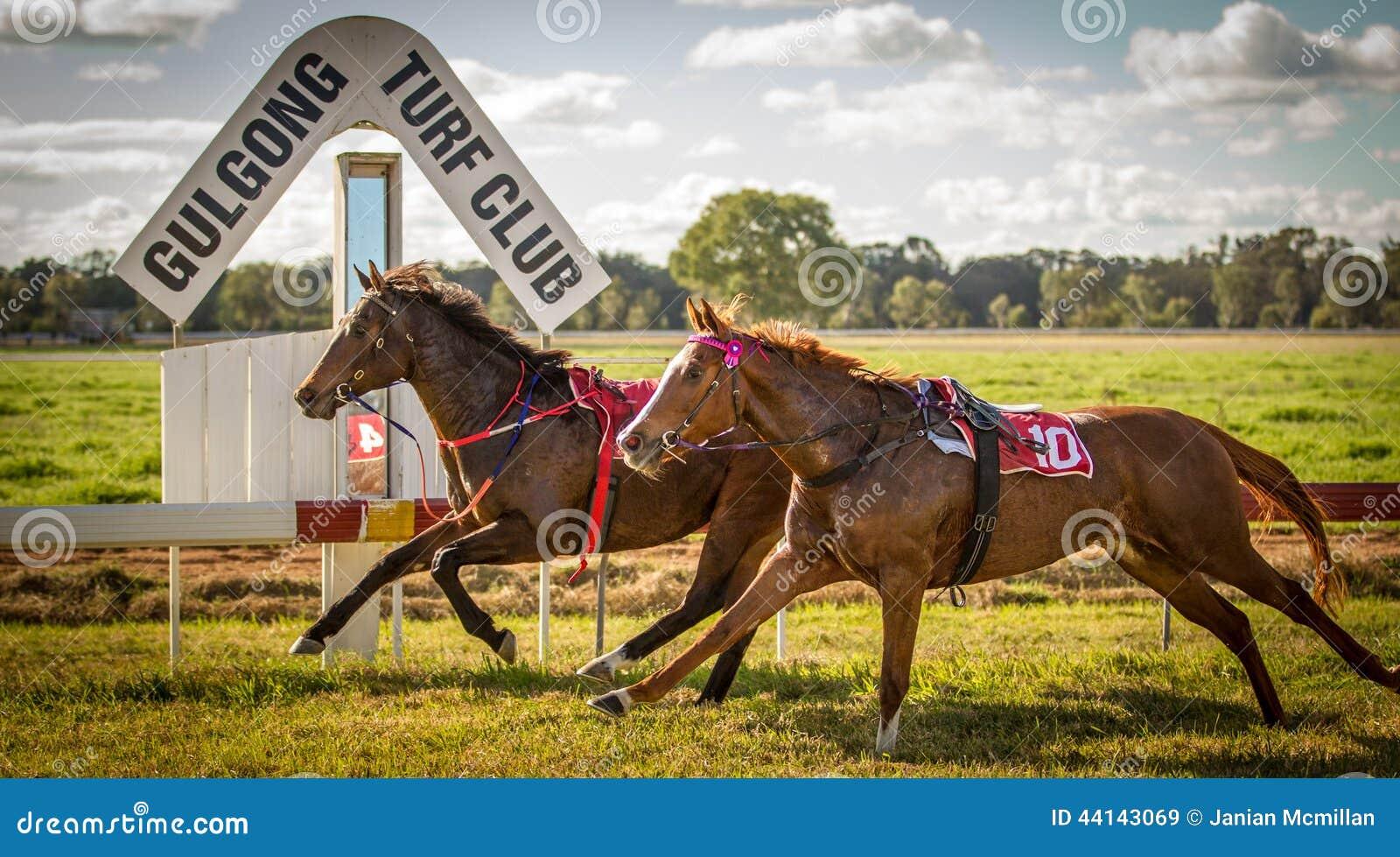 Αγώνας δύο αλόγων αγώνων χωρίς jockeys σε Gulgong NS