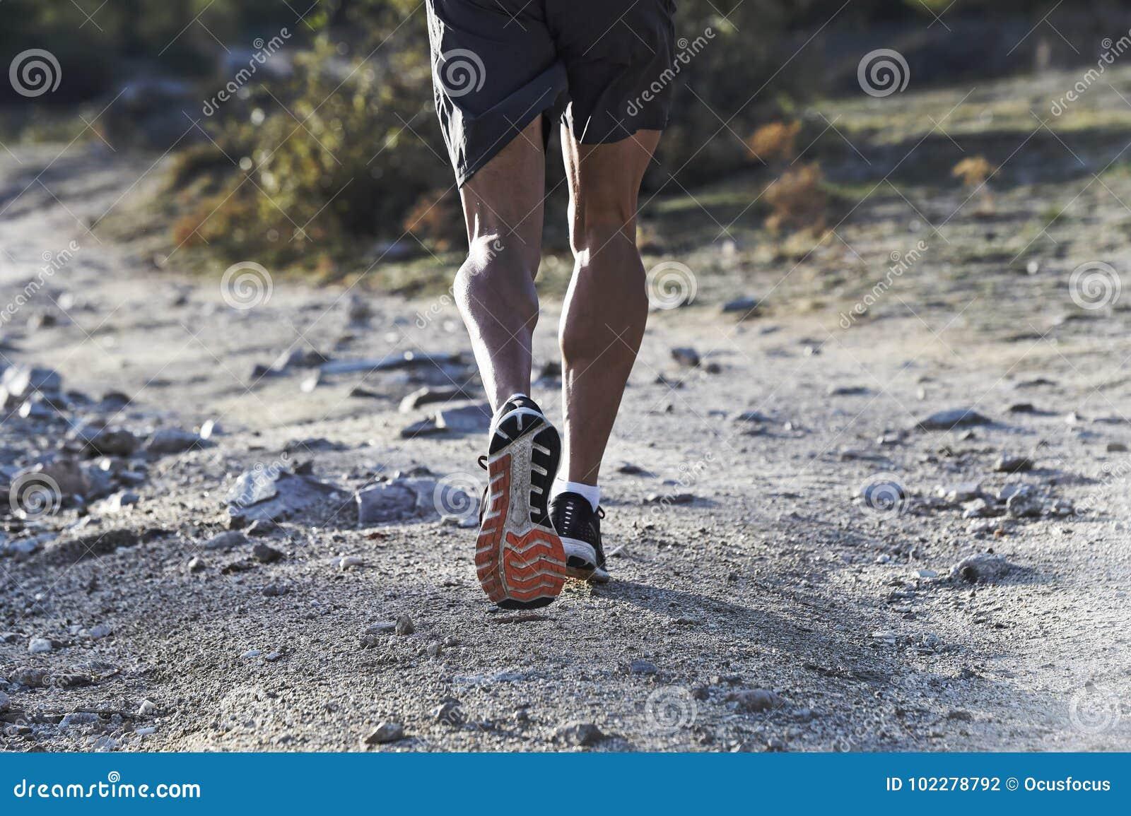 Αθλητής με το σχισμένο αθλητικό και μυϊκό τρέχοντας δρόμο ποδιών η κατάρτιση workout στην επαρχία στο υπόβαθρο φθινοπώρου