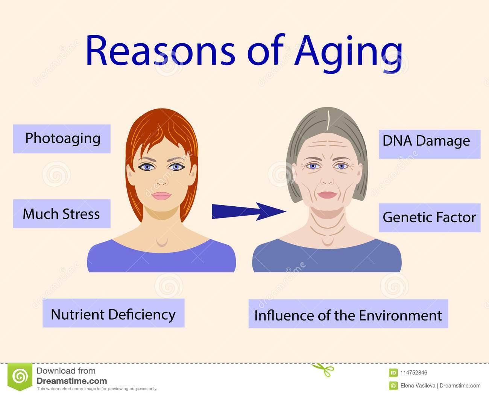 Αιτίες της γήρανσης, διανυσματική απεικόνιση με δύο πρόσωπα