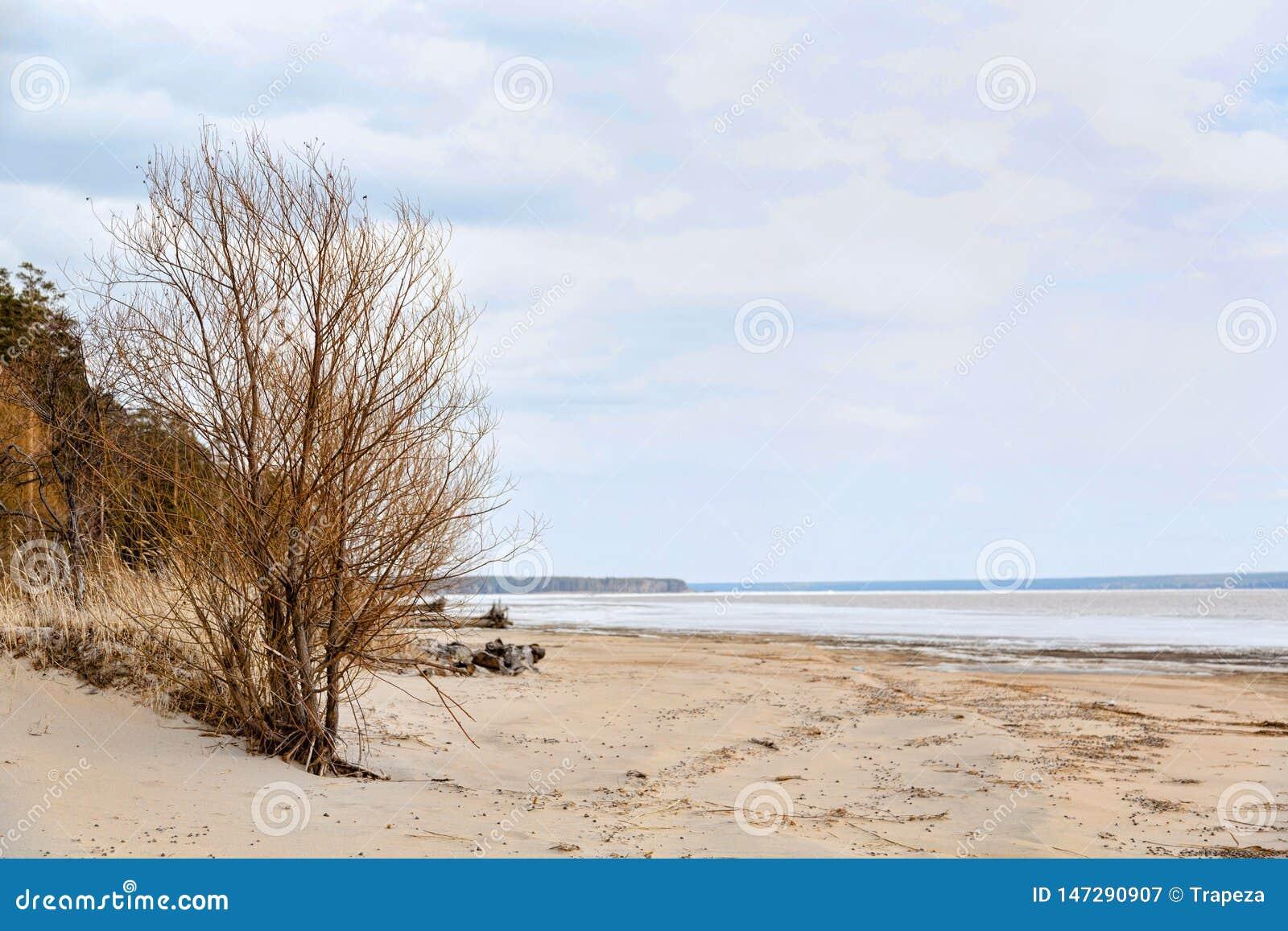 Ακτή λιμνών και ένα όμορφο cloudscape