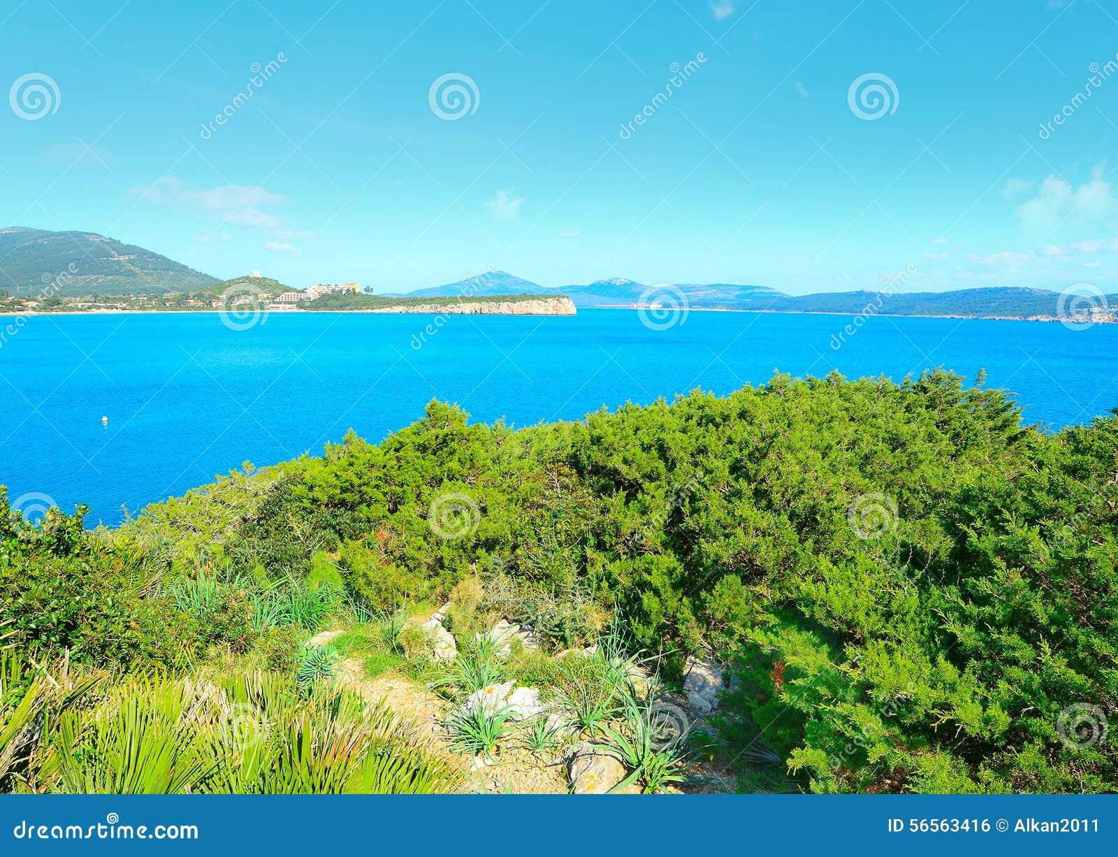 Download Ακτή της Σαρδηνίας που βλέπει από Cala Dragunara Στοκ Εικόνες - εικόνα από κόλπων, φύση: 56563416