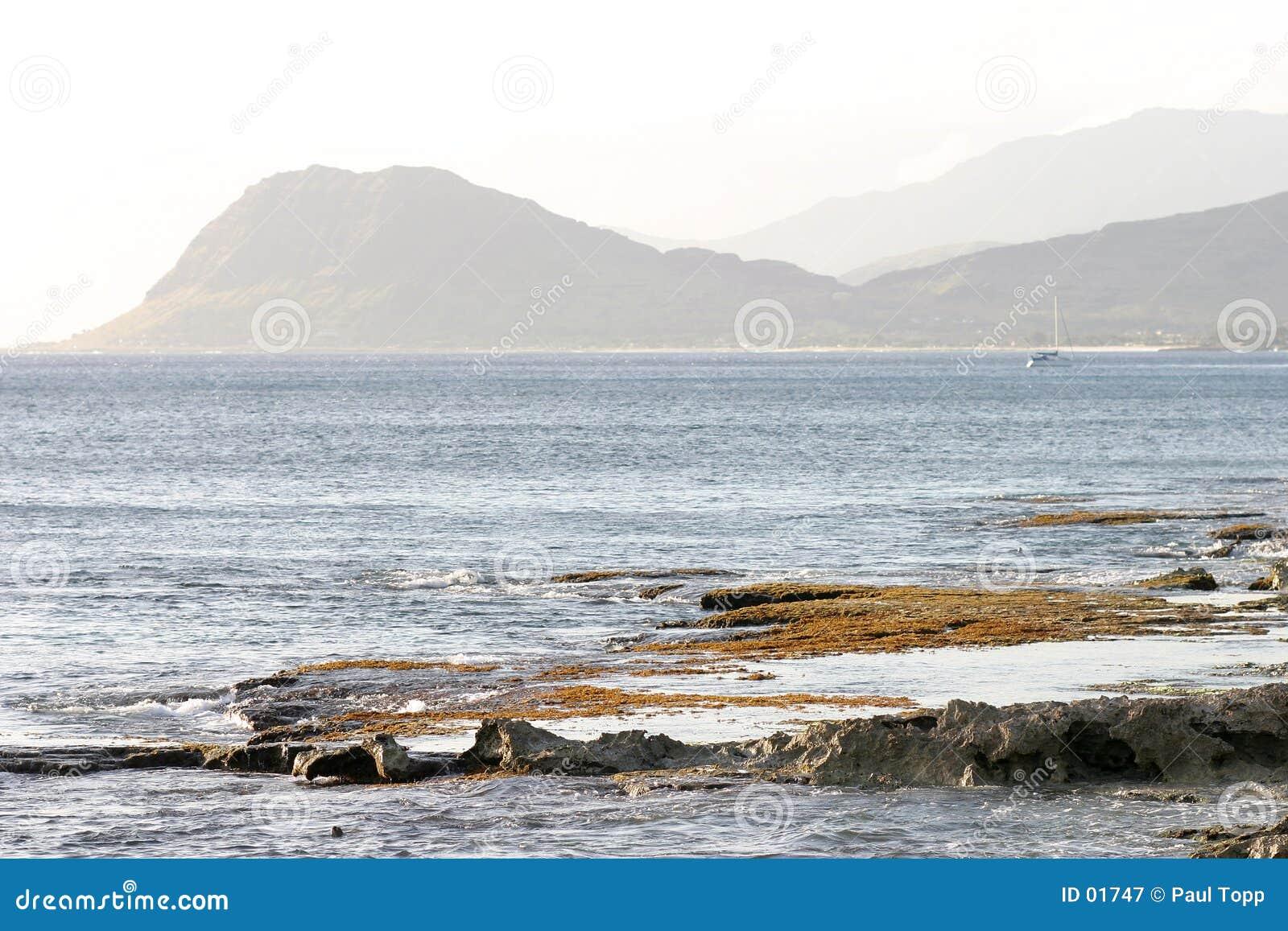 ακτή Χαβάη oahu τραχύ