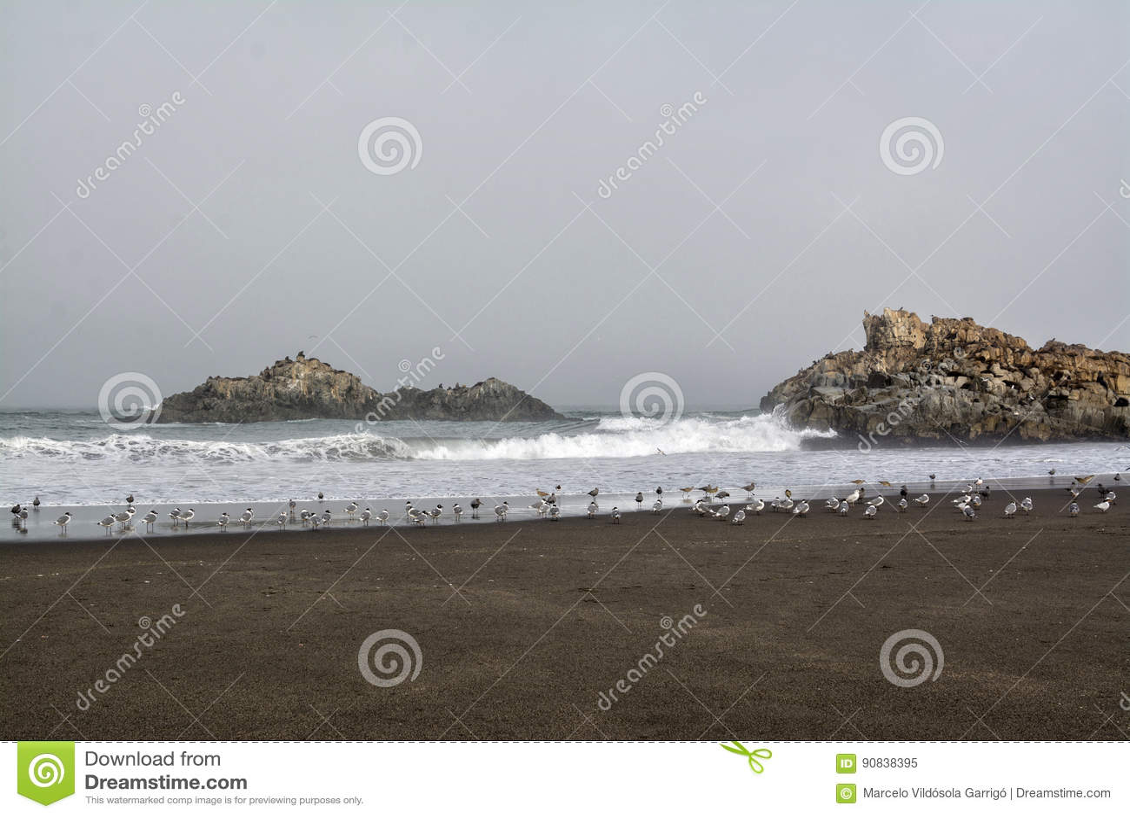 Ακτή Cobquecura, Χιλή