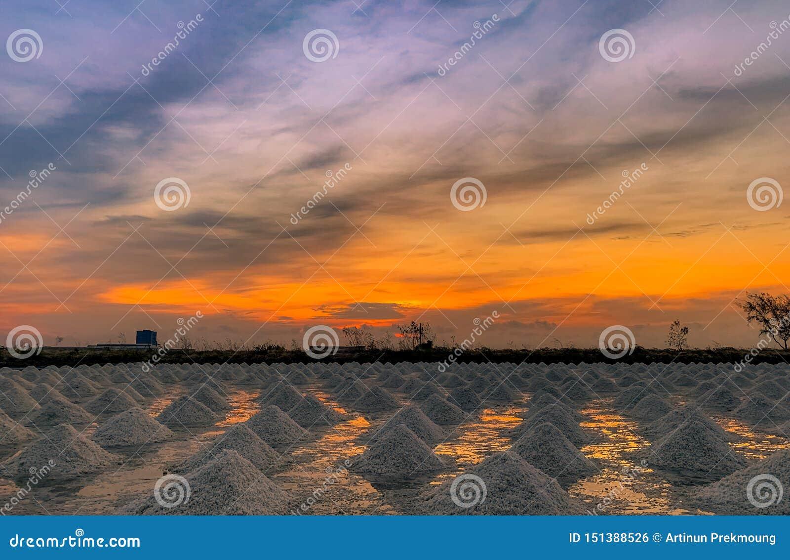 Αλατισμένο αγρόκτημα το πρωί με τον ουρανό ανατολής Οργανικό άλας θάλασσας Εξάτμιση και κρυστάλλωση του θαλάσσιου νερού Πρώτη ύλη