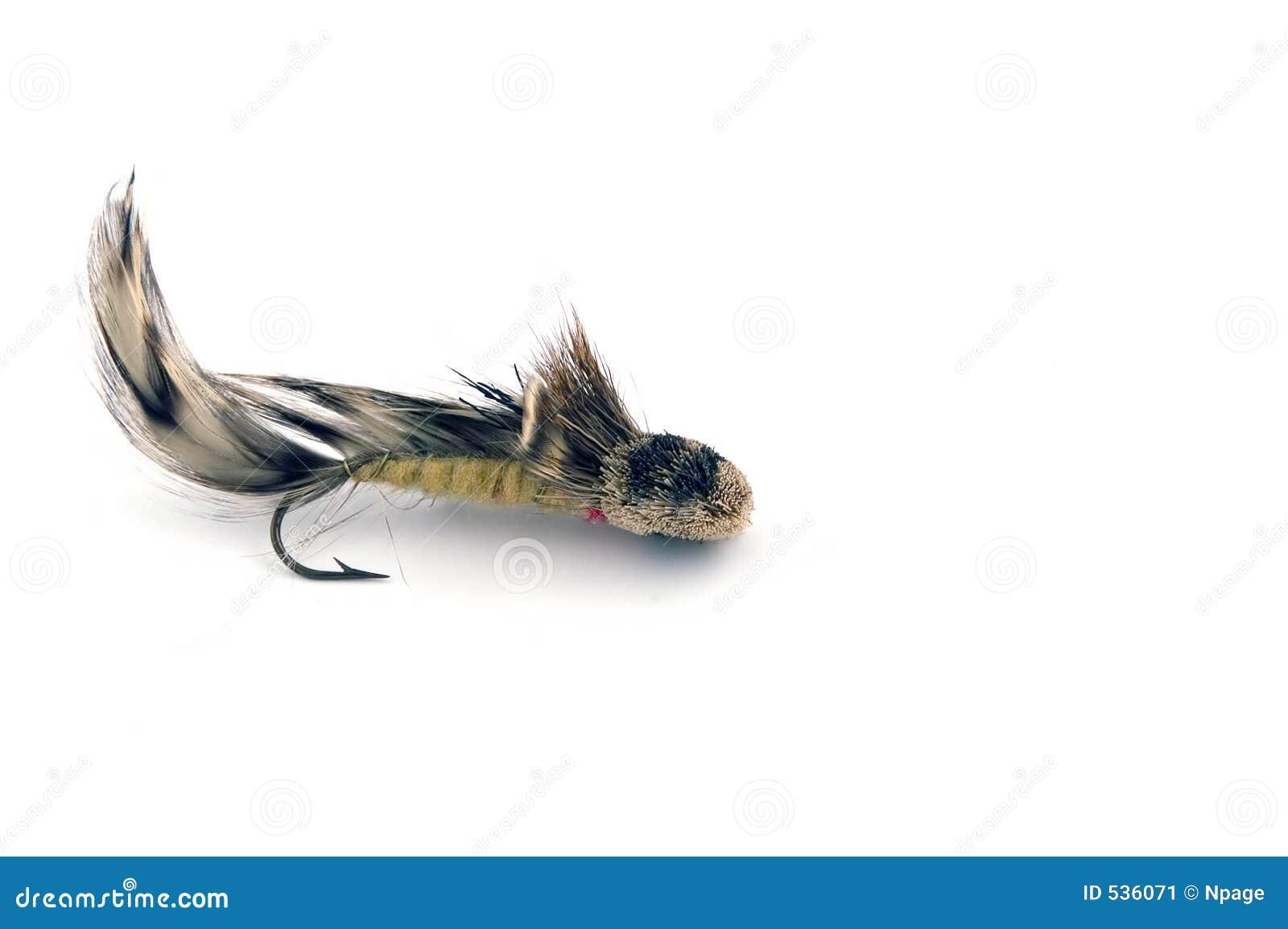 αλιεία ΙΙΙ θελγήτρου