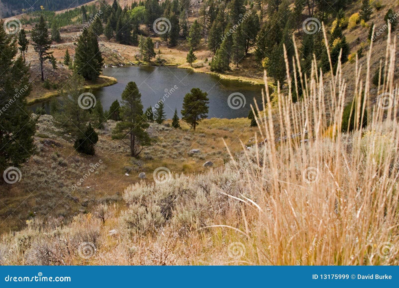 αλιεύοντας υψηλό βουνό &lambd