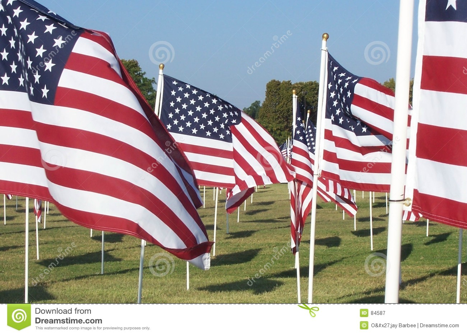 αμερικανικές σημαίες