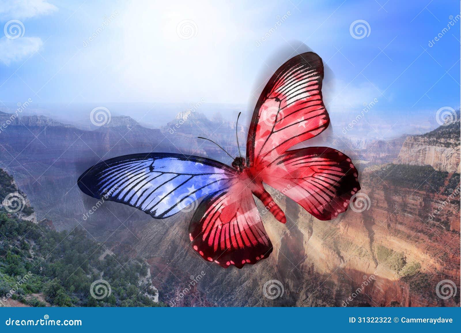 Αμερικανική πεταλούδα