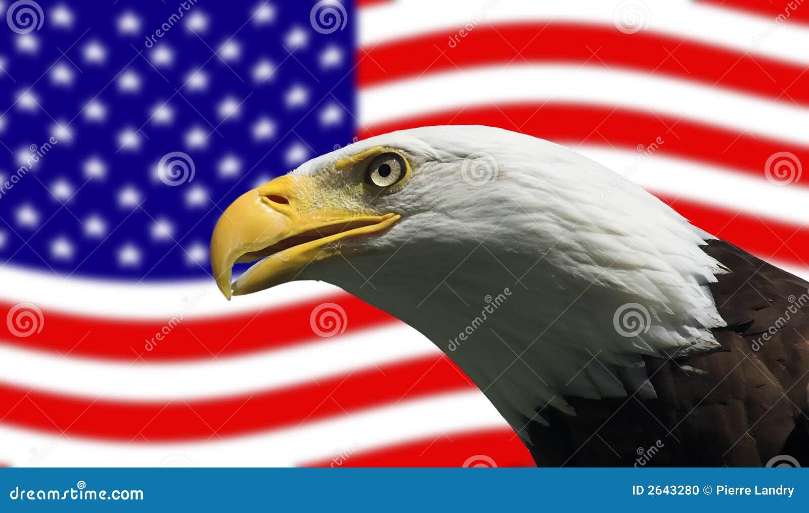 αμερικανική φαλακρή σημαί&