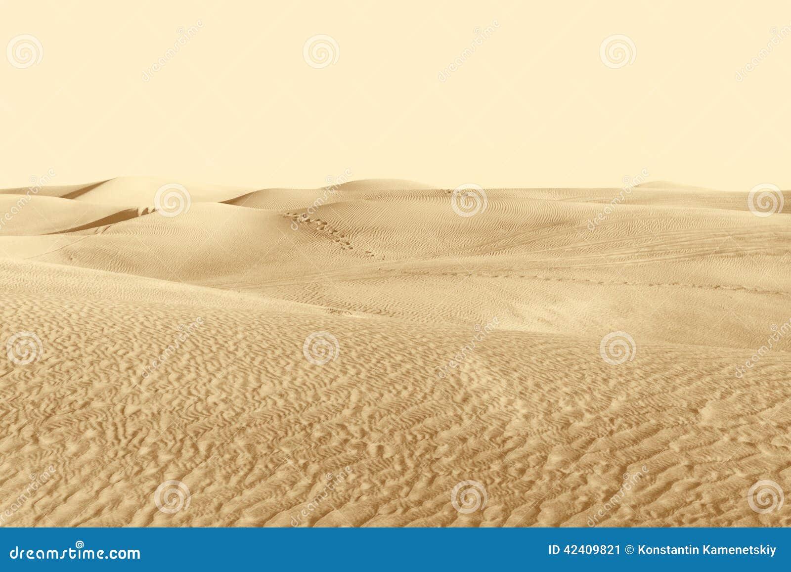 Αμμόλοφοι στην έρημο