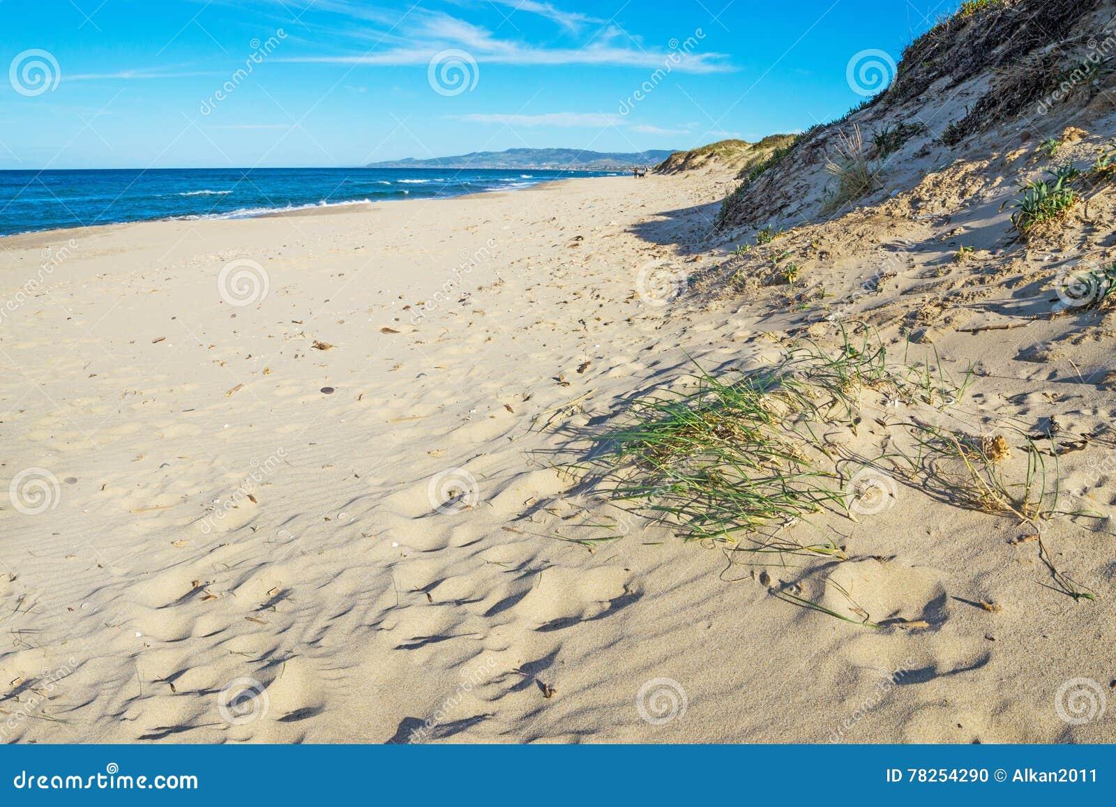 Αμμόλοφος άμμου στην παραλία Platamona