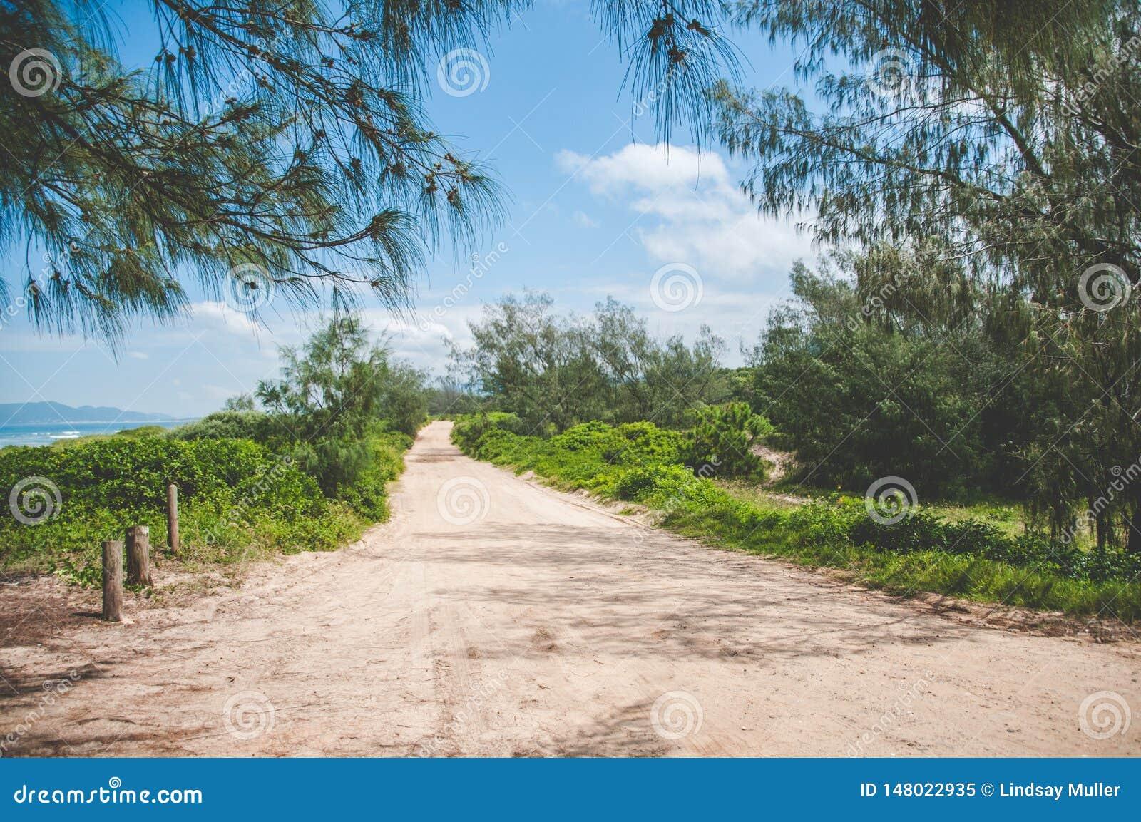Αμμώδης δρόμος εκτός από τον ωκεανό σε Florianopolis, Βραζιλία