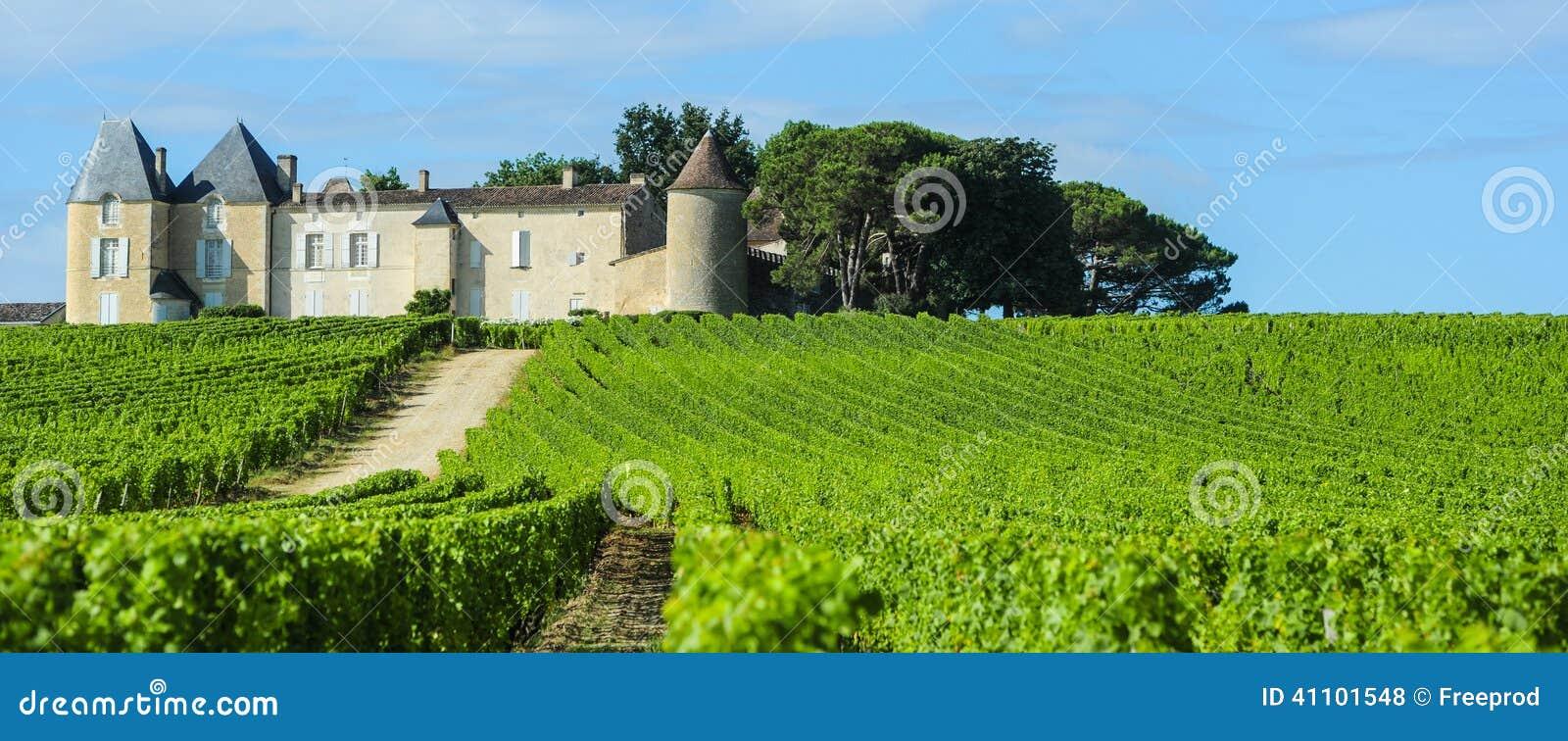 Αμπελώνας και πύργος d Yquem, περιοχή του Sauterne, Aquitaine, φράγκο