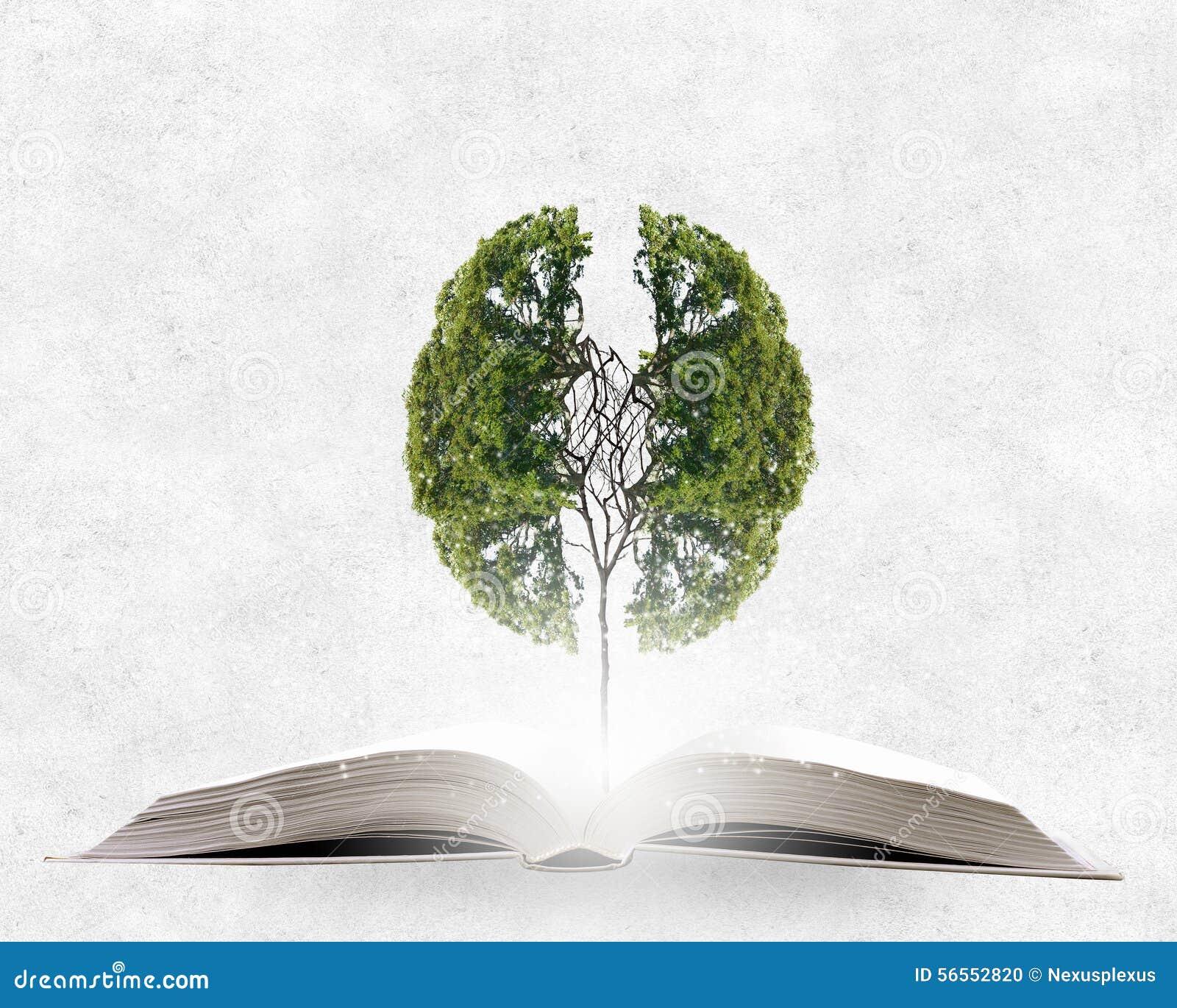 Download Ανάγνωση και μόνη εκπαίδευση Στοκ Εικόνες - εικόνα από ανάγνωση, έξυπνος: 56552820