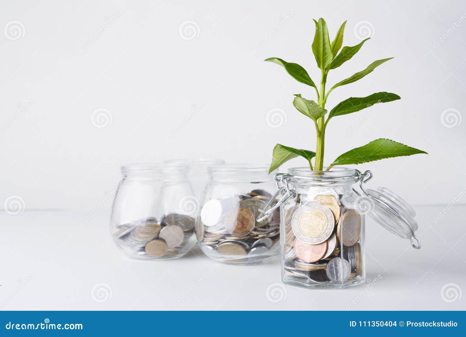 Ανάπτυξη εγκαταστάσεων στα νομίσματα στο βάζο γυαλιού