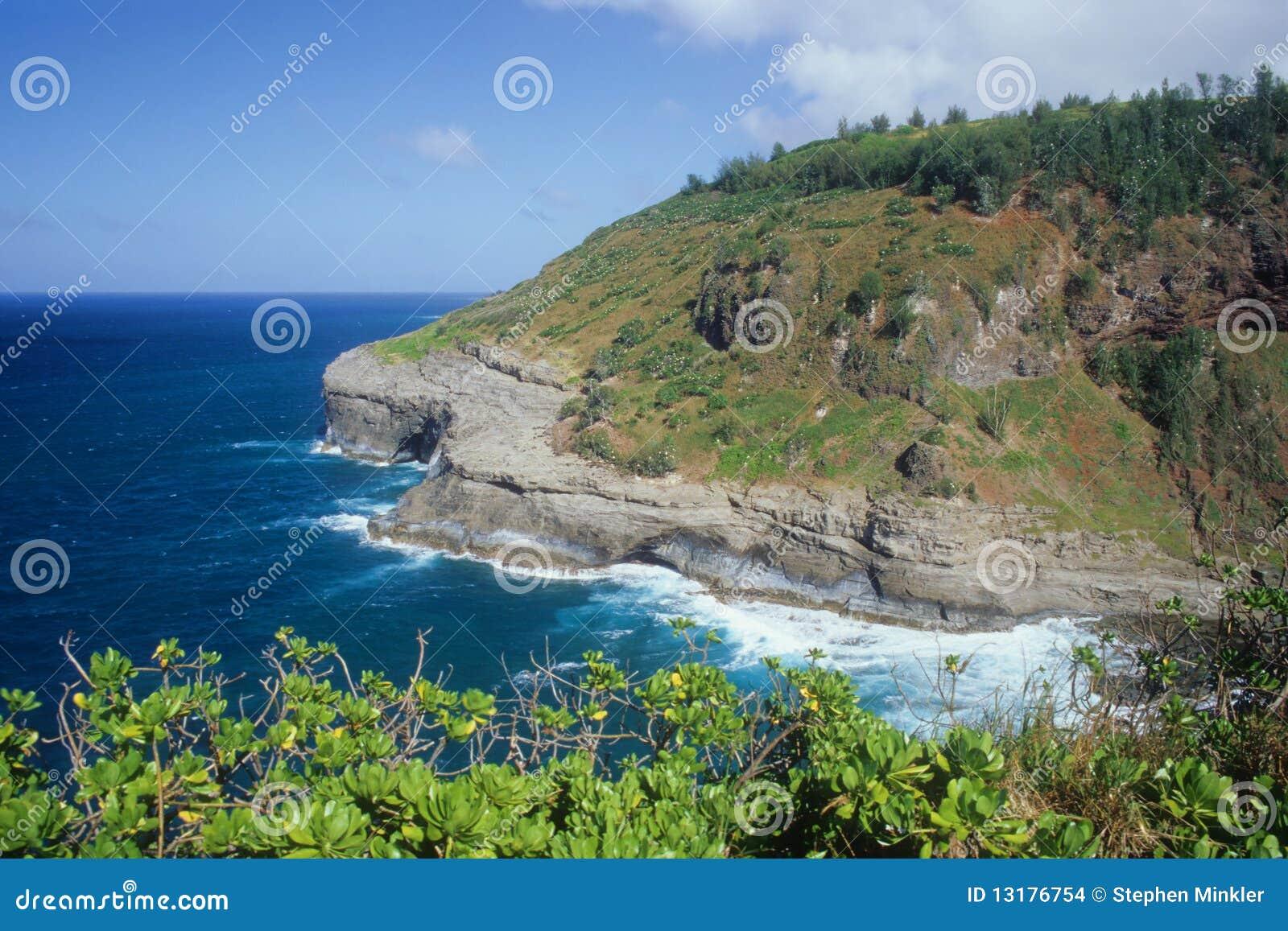 ανατολική kauai ακτή