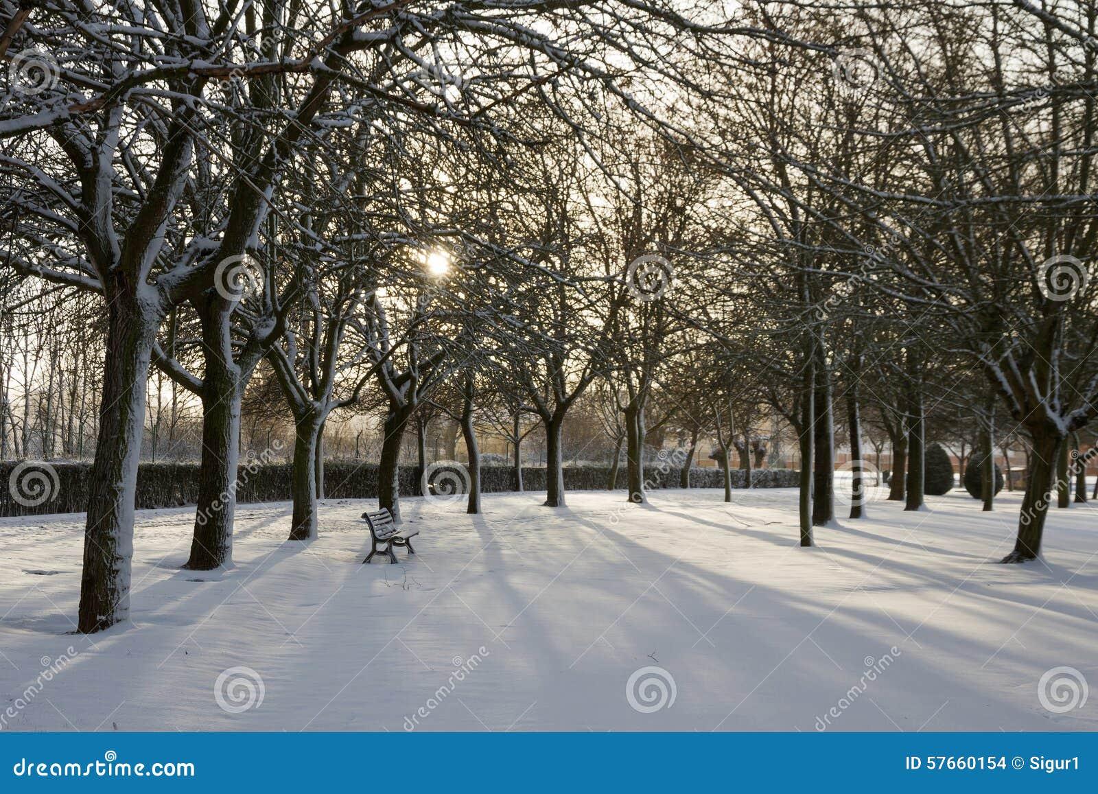 Αναδρομικά φωτισμένο πάρκο χιονώδες του ήλιου