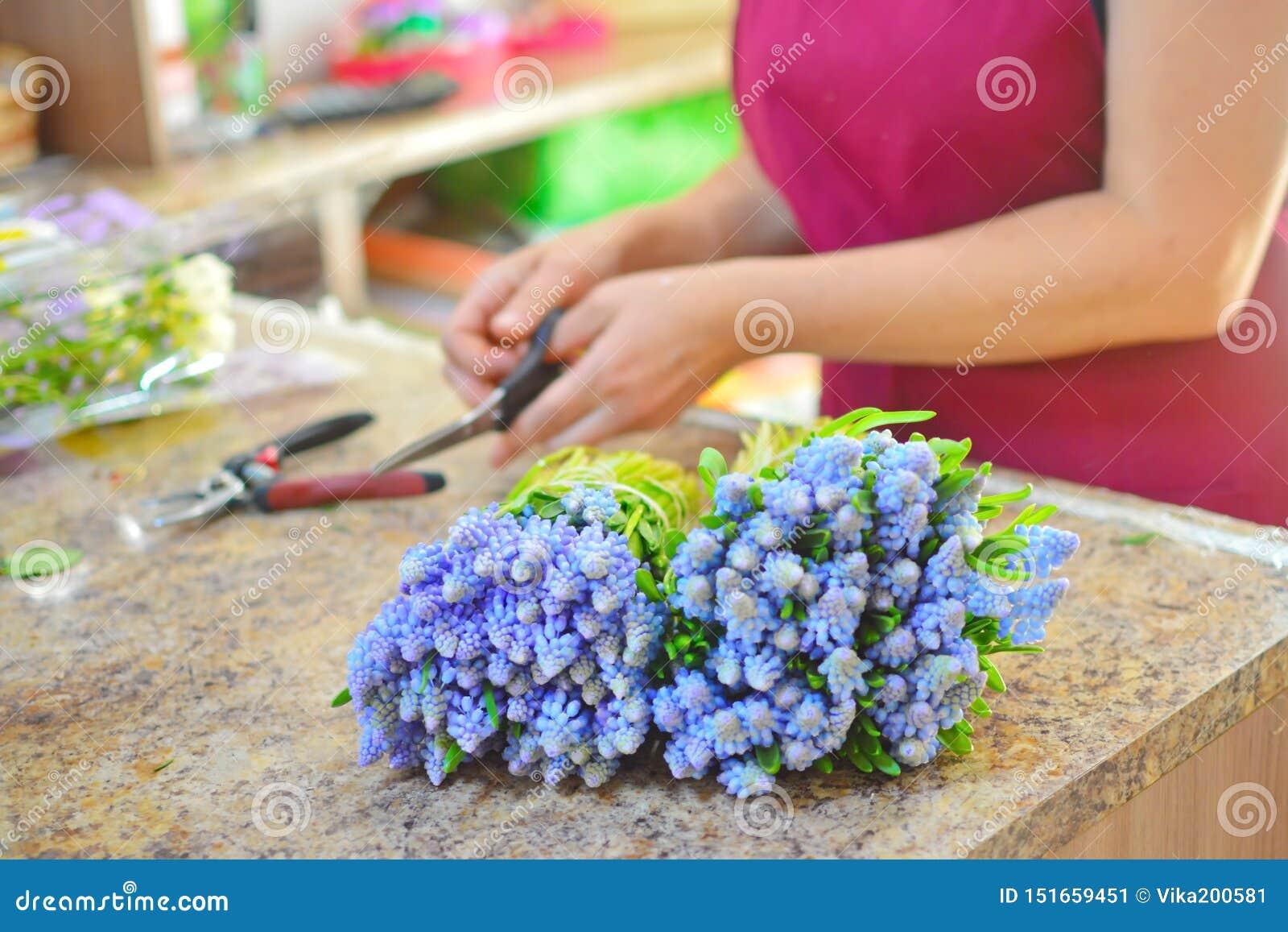 Ανθοκόμος στην εργασία Γυναίκα που κάνει την ανθοδέσμη των λουλουδιών mattiola άνοιξη