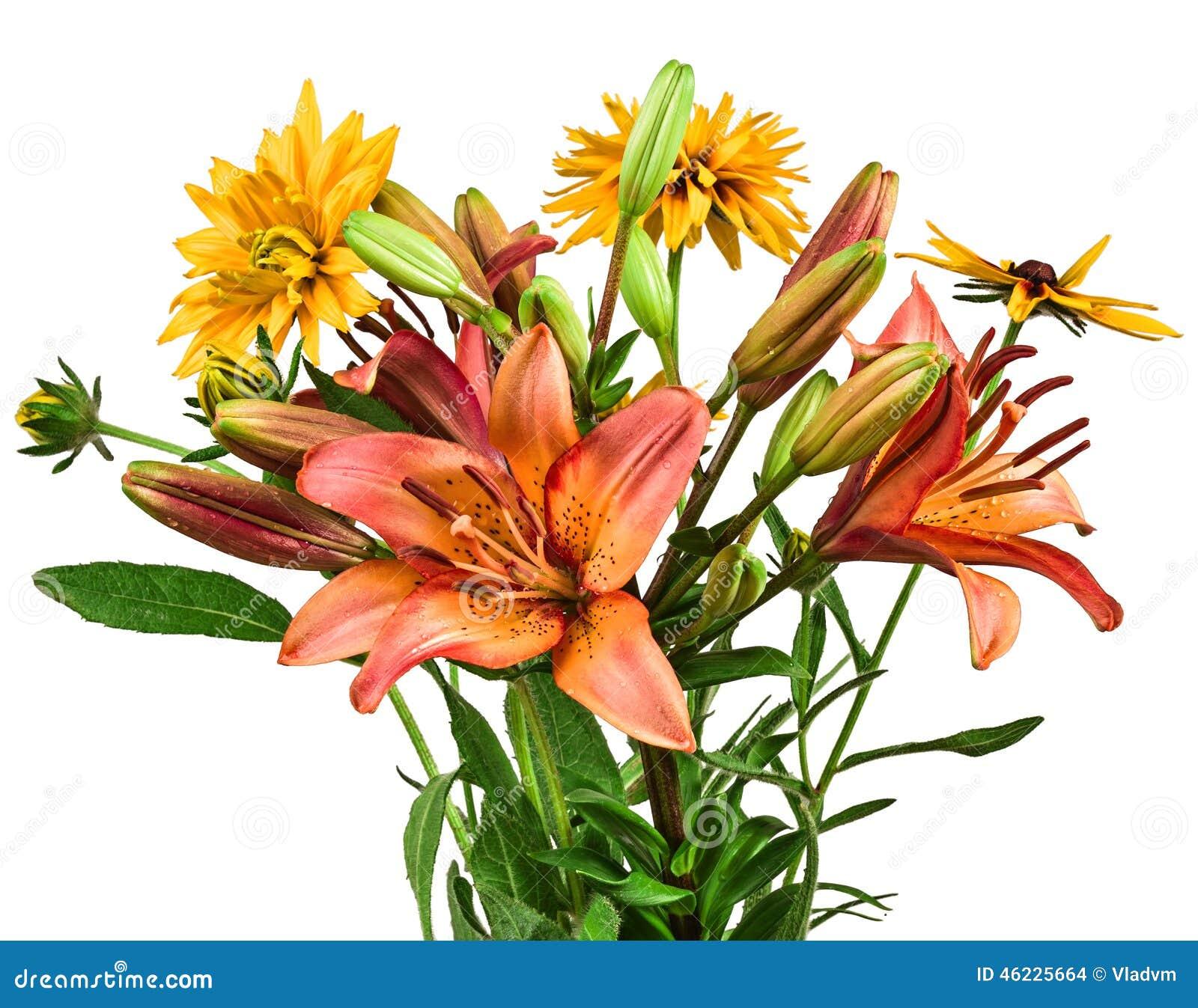 Ανθοδέσμη λουλουδιών των κρίνων στο άσπρο υπόβαθρο