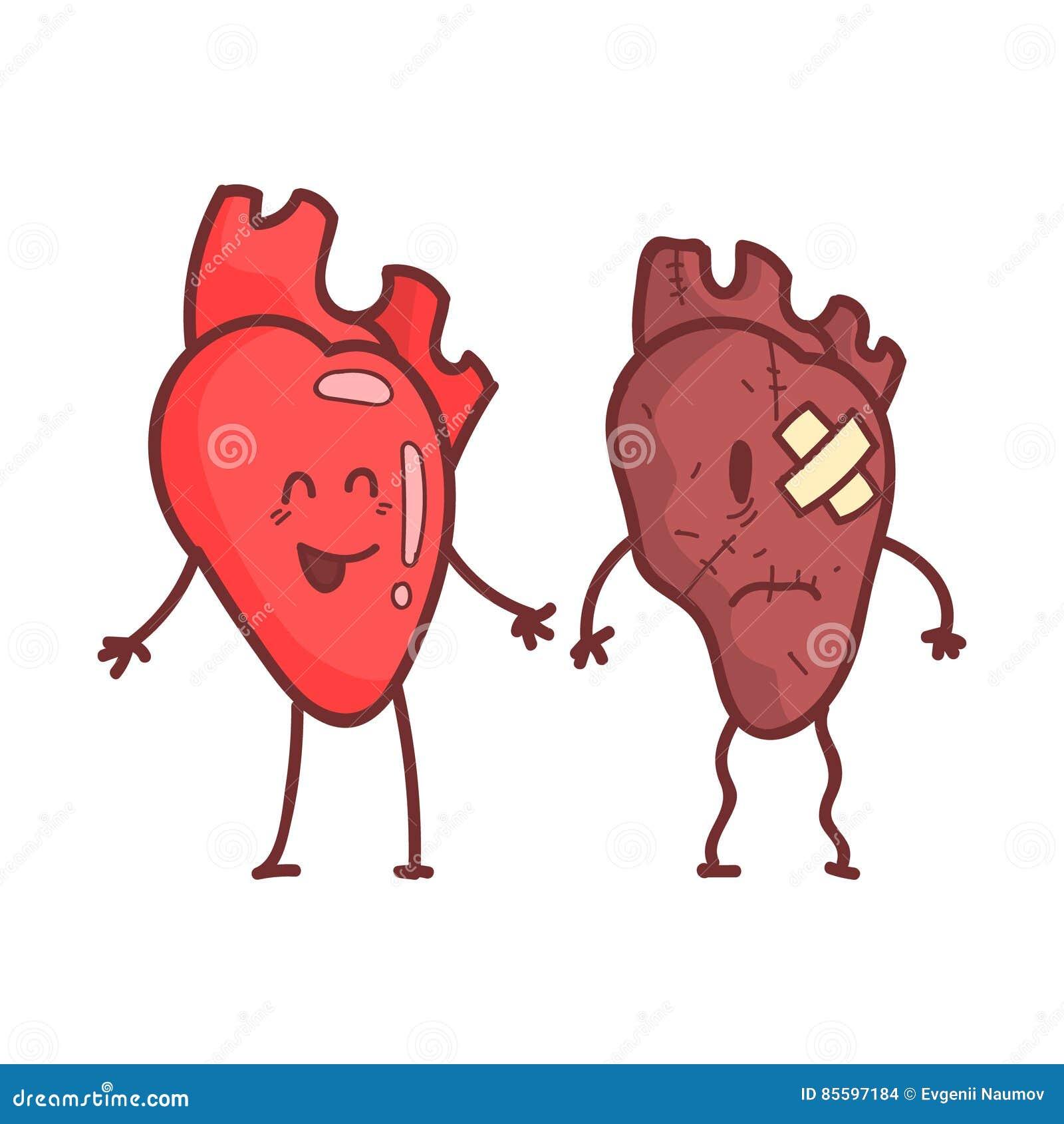 Ανθρώπινο εσωτερικό όργανο καρδιών υγιές εναντίον του ανθυγειινού, ιατρικού ανατομικού αστείου ζευγαριού χαρακτήρα κινουμένων σχε