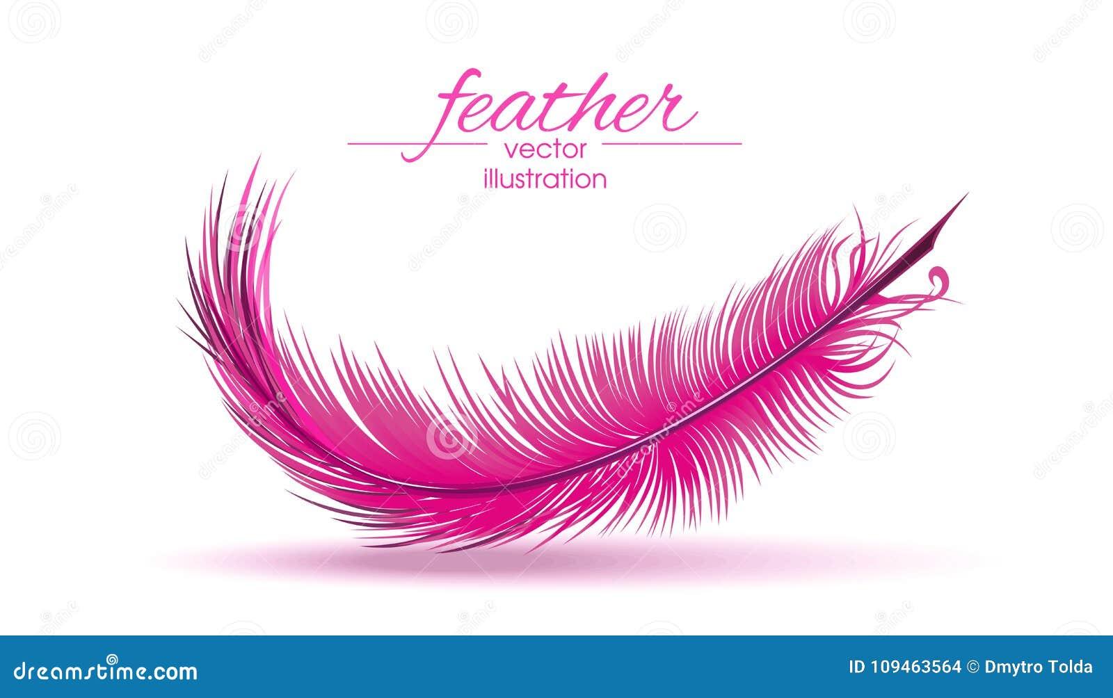 Ανοικτό ροζ φτερό που απομονώνεται στο άσπρο υπόβαθρο