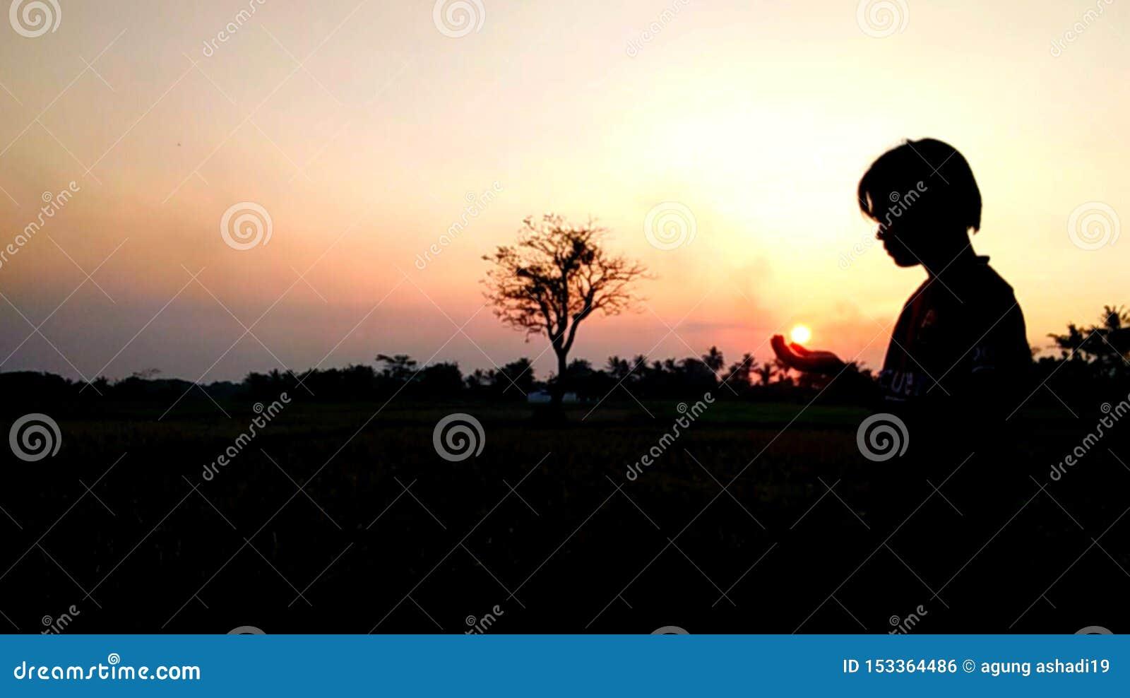 Ανοιχτό κόκκινο νυχτερινού ουρανού ηλιοβασιλέματος φύσης στο δέντρο