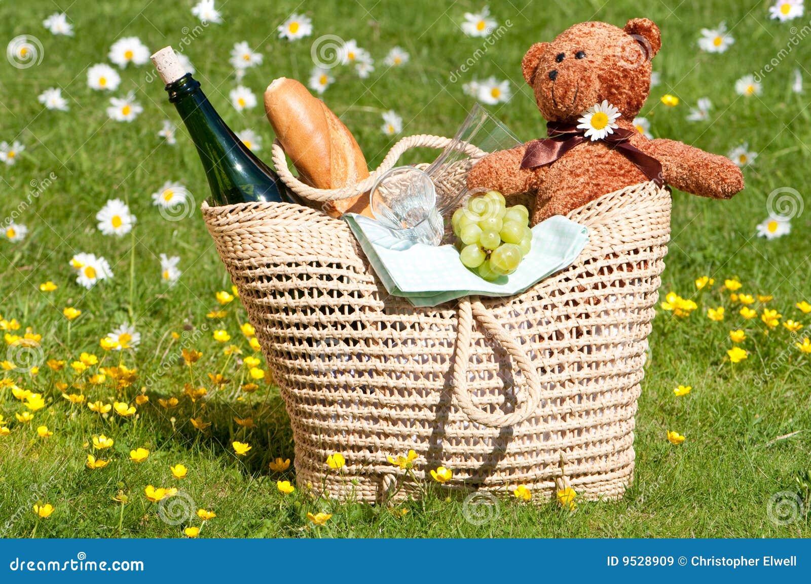 αντέχει picnic teddy