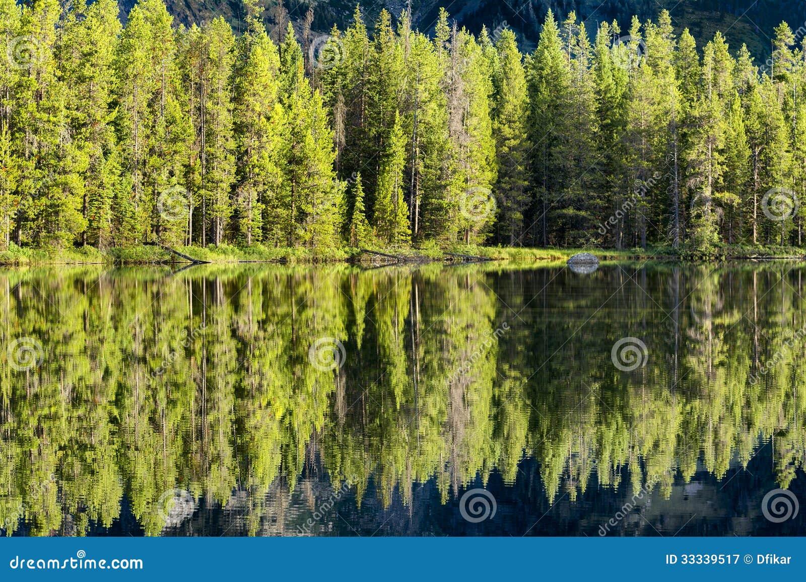 Αντανακλάσεις πρωινού στη λίμνη σειράς