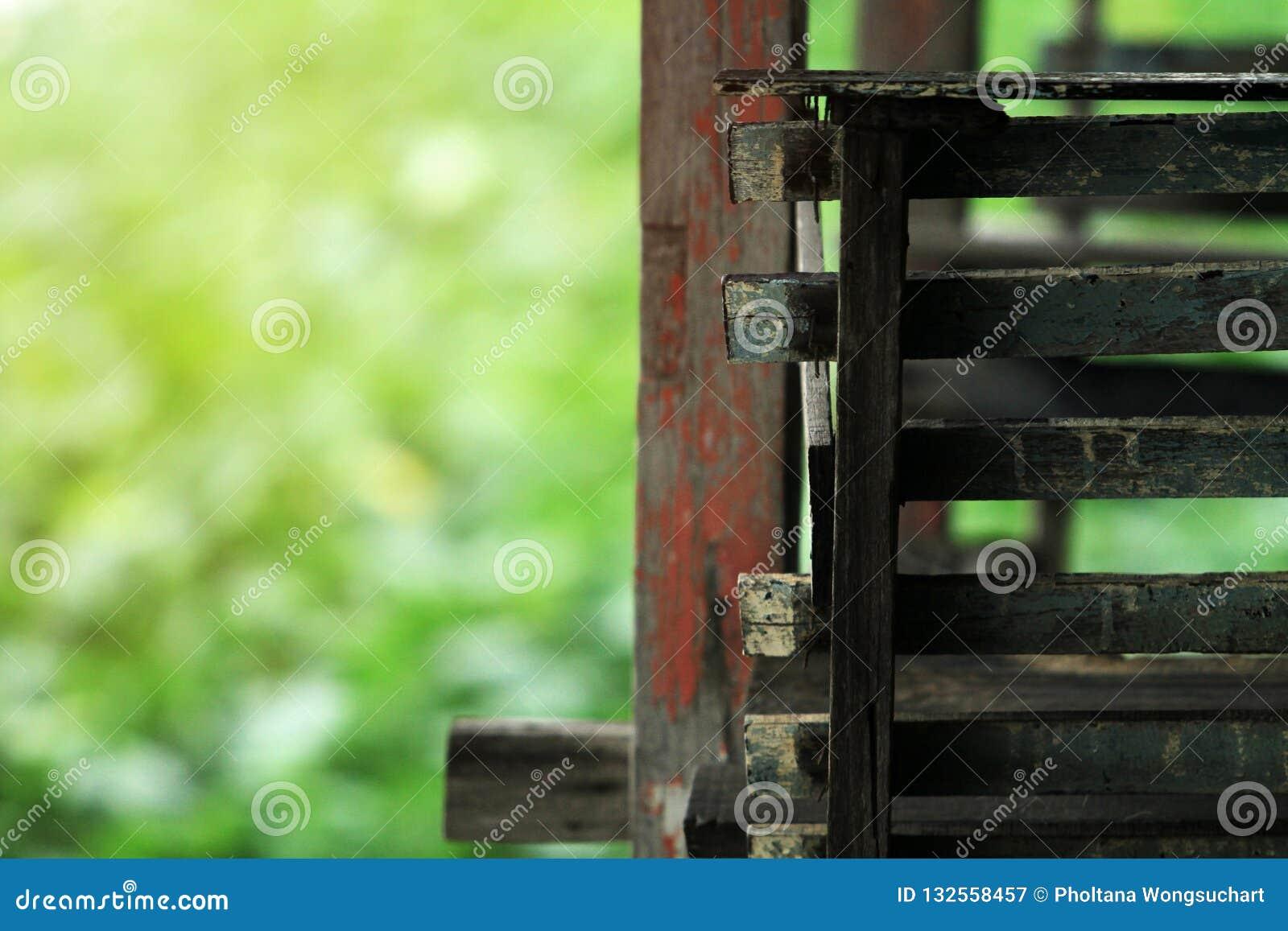 Απαρίθμηση εστίασης των ξύλινων σκαλοπατιών Και οι εικόνες υποβάθρου είναι δέντρα και φύση