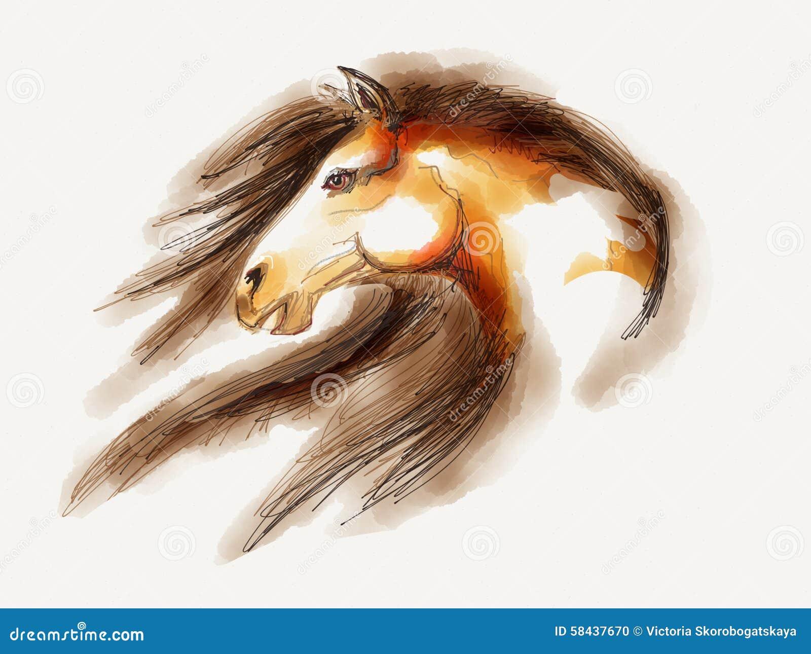 Απεικόνιση αλόγων