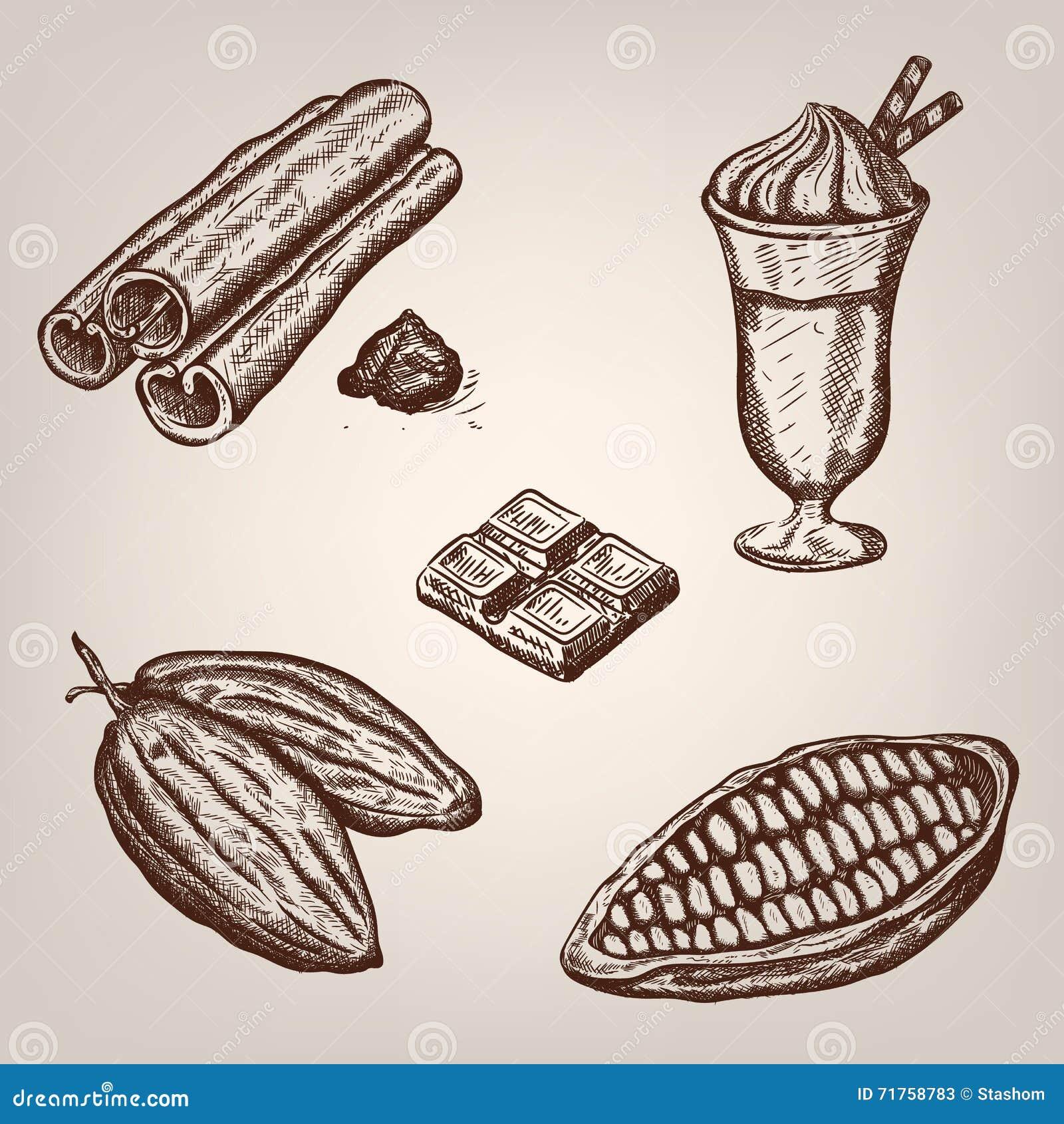 Απεικόνιση σχεδίων χεριών των φασολιών κακάου, σοκολάτα, φλυτζάνι της καυτής σοκολάτας, κανέλα