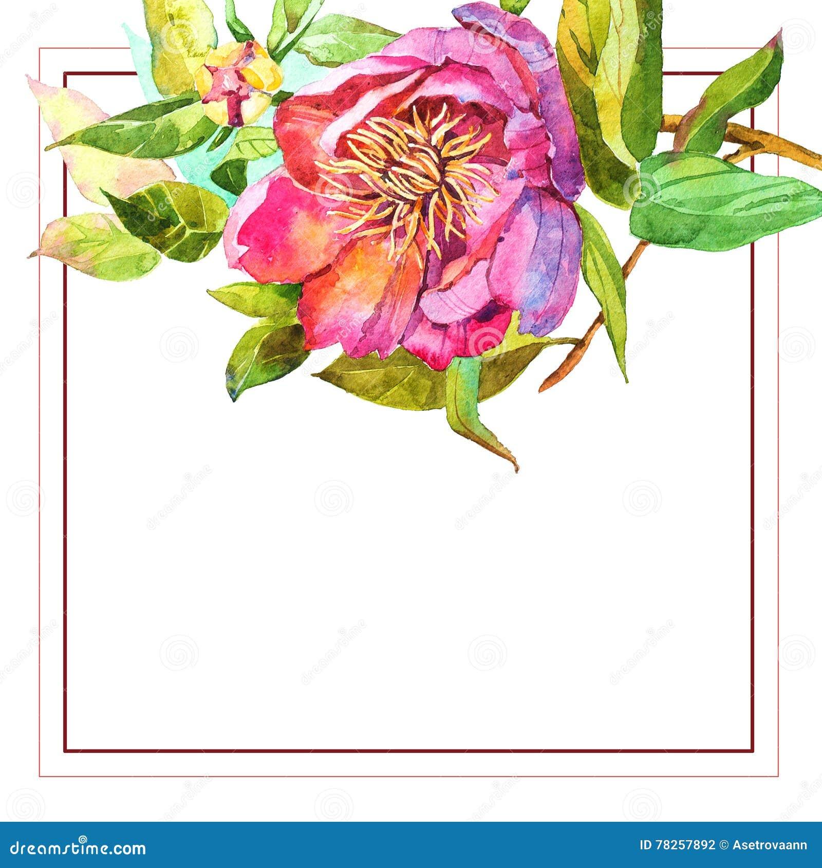 Απεικόνιση watercolor λουλουδιών