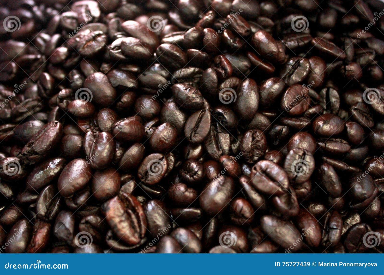 απομονωμένη ιδανικό μακροεντολή καφέ προγευμάτων φασολιών πέρα από το λευκό