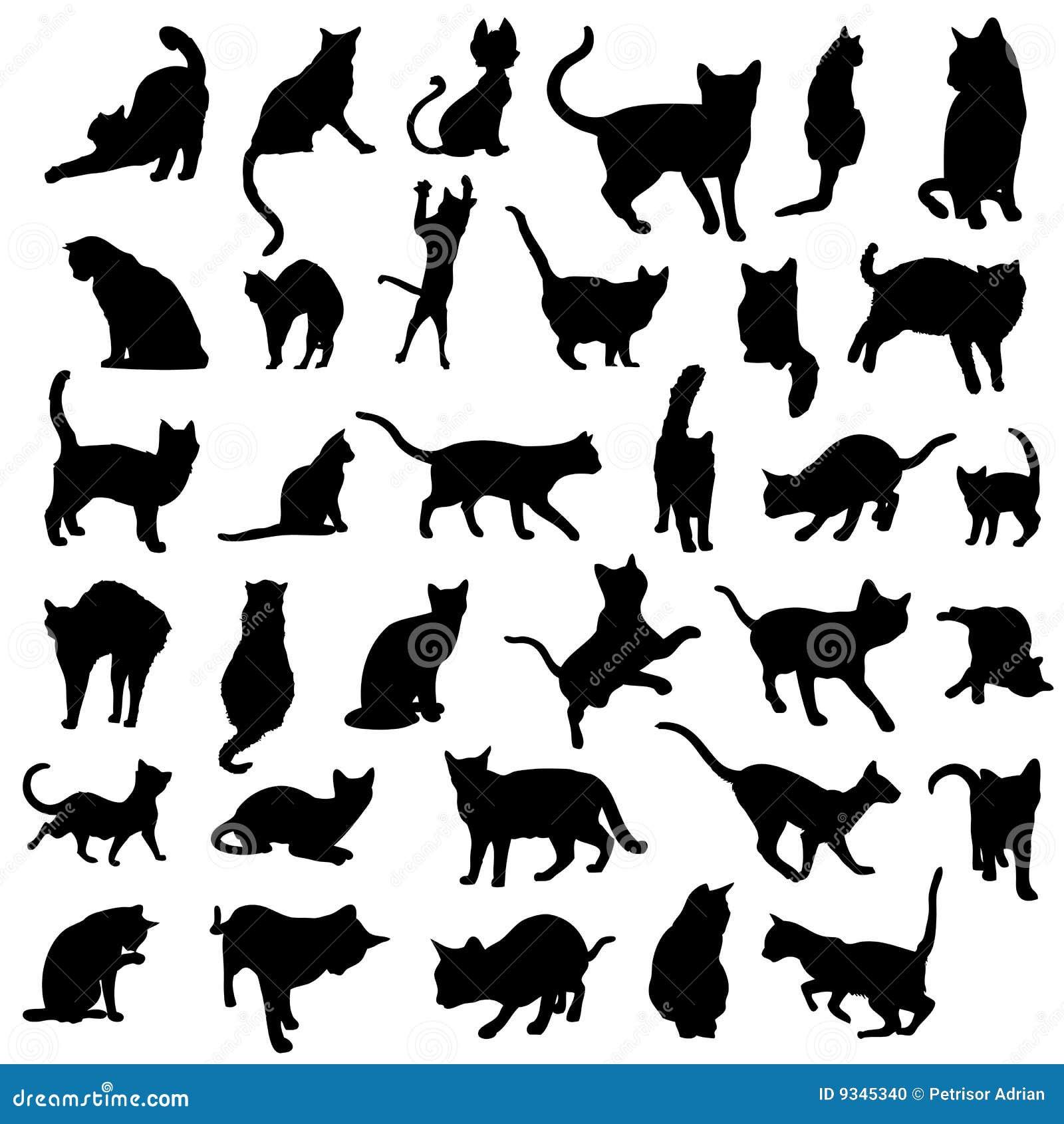απομονωμένο διάνυσμα σκιαγραφιών γατών συλλογή