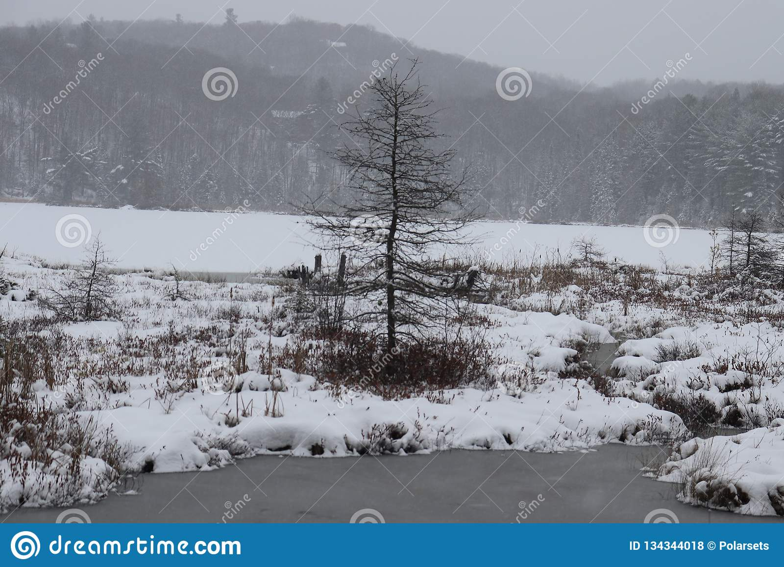 Απόμερος χειμώνας